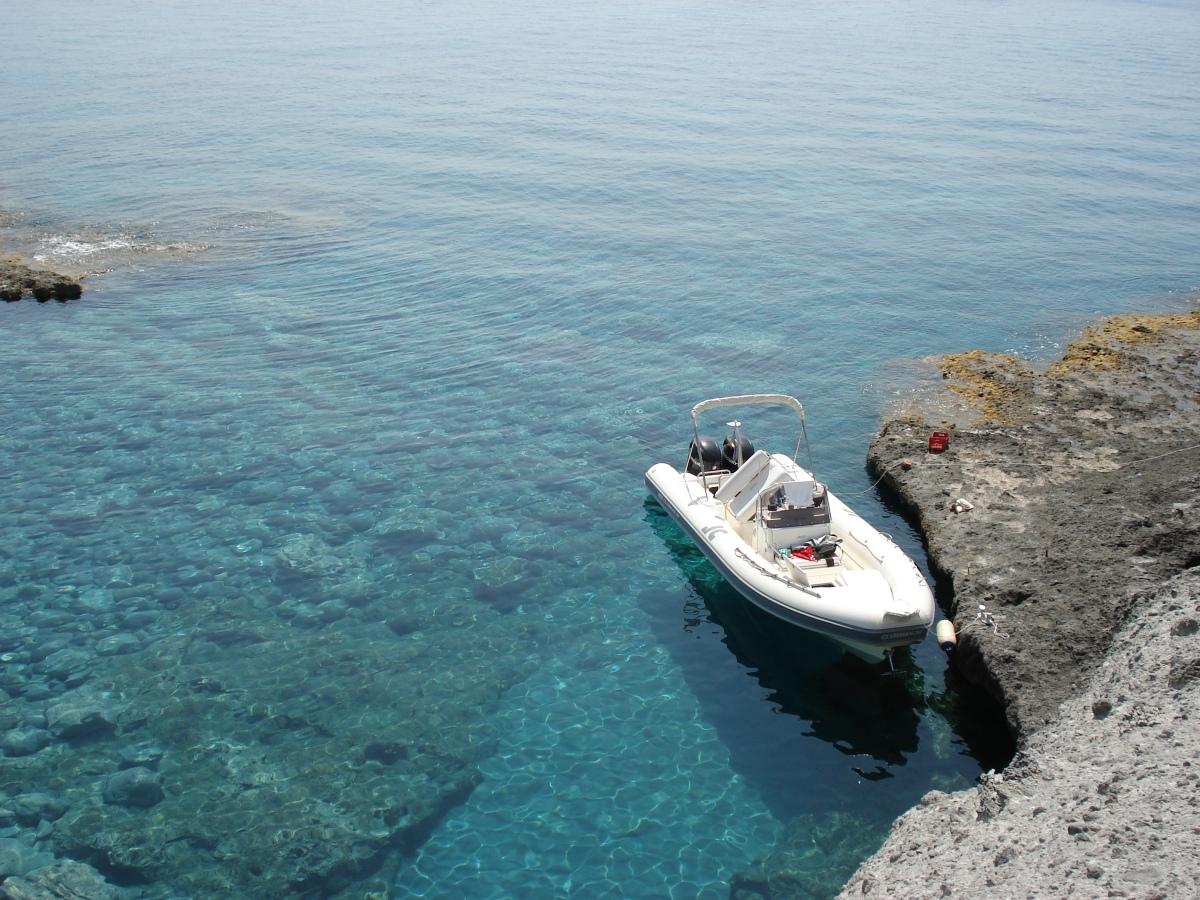Il paradiso incontaminato di Palmarola. Una splendida sorpresa in mezzo al mare!