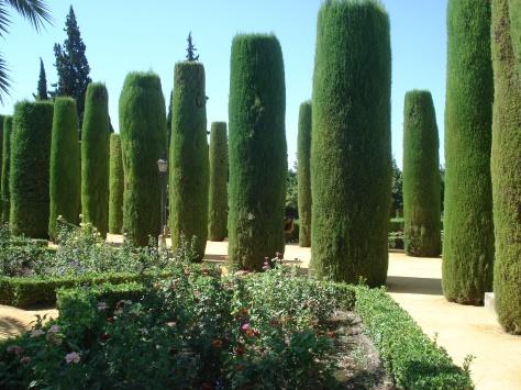 Andalusia - Agosto 2009 170