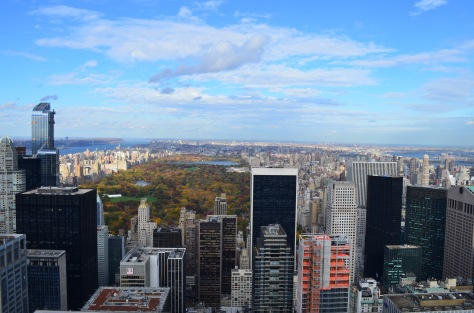 Vista su Central Park - Top of the Rock